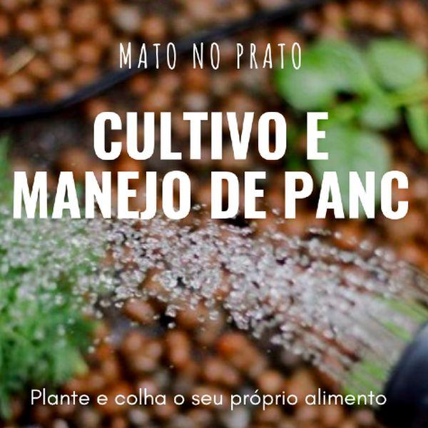 Imagem principal do produto E-BOOK CULTIVO E MANEJO DE PANC