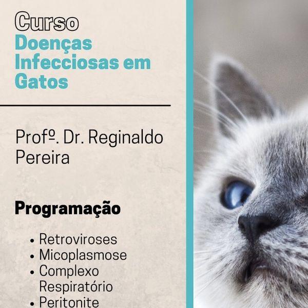 Imagem principal do produto Curso de Doenças Infecciosas de Gatos