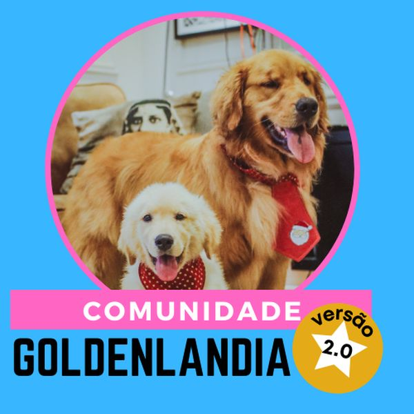 Imagem principal do produto Comunidade Goldenlândia 2.0