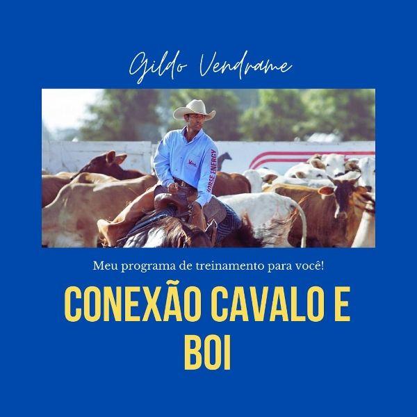 Imagem principal do produto Conexão Cavalo e Boi
