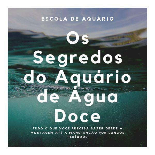 Curso de aquarismo de água doce