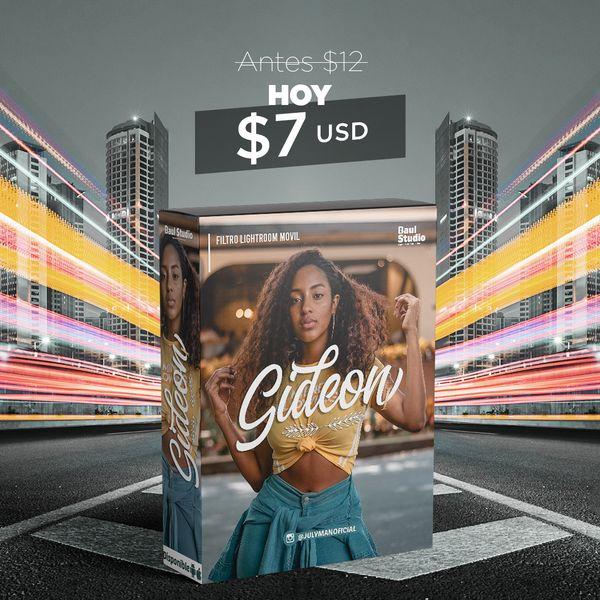 Imagem principal do produto Filtro (Preset) Adobe Lightroom